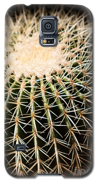 Galaxy S5 Case featuring the photograph Single Cactus Ball by John Wadleigh