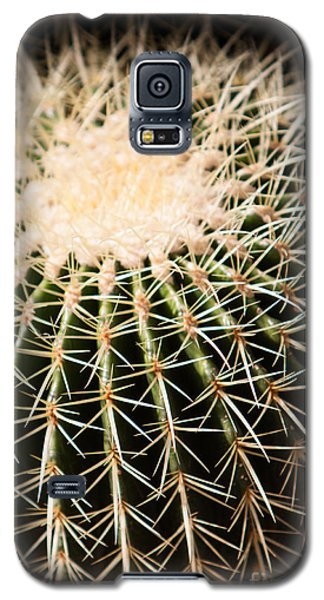 Single Cactus Ball Galaxy S5 Case