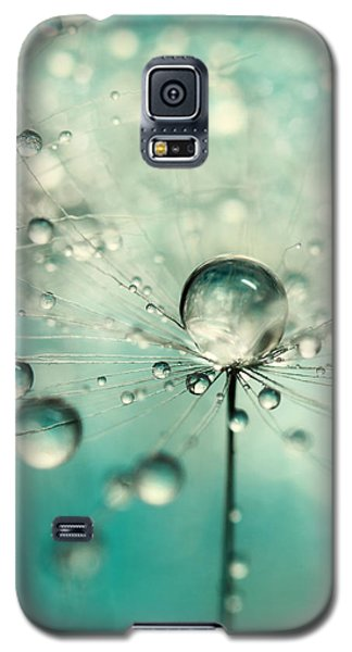 Single Dandy Starburst Galaxy S5 Case