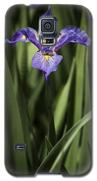 Galaxy S5 Case featuring the photograph Single Iris by Penny Lisowski