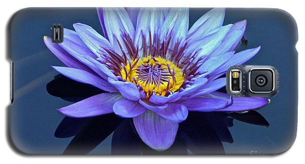 Single Lavender Water Lily Galaxy S5 Case