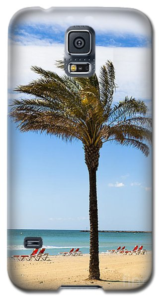 Single Palm Tree On Beach With Unoccupied Sun Loungers Galaxy S5 Case