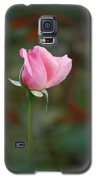 Galaxy S5 Case featuring the photograph Single Pink Rose by Kathy Gibbons