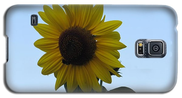 Galaxy S5 Case featuring the photograph Single Sunflower And The Bees by Tina M Wenger