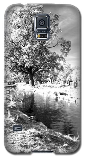 Single Tree Aginst The Sun Galaxy S5 Case