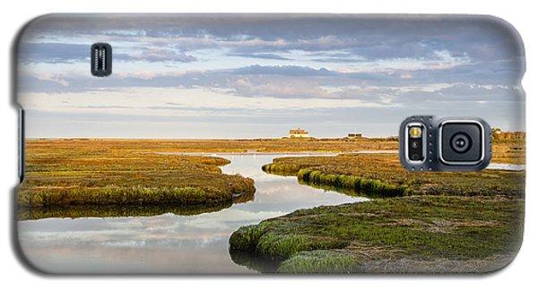 Sippewissett Marsh Galaxy S5 Case
