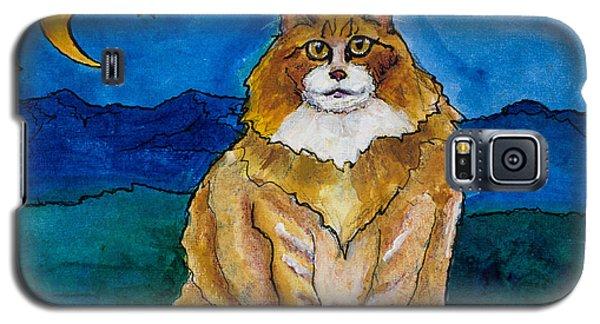 Sir Drake A Lotta Cat IIi Galaxy S5 Case