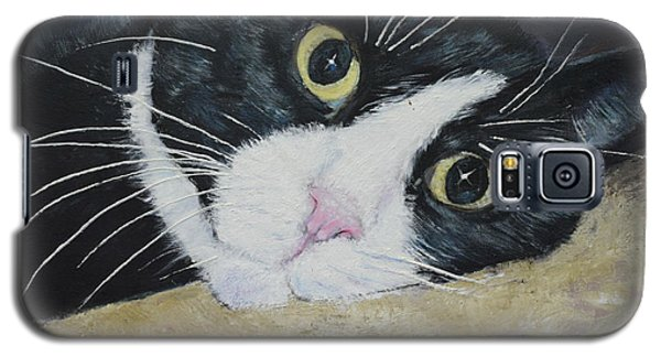 Sissi The Cat 3 Galaxy S5 Case
