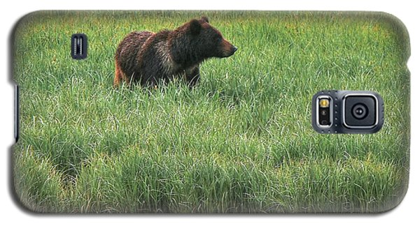 Sitka Grizzly Galaxy S5 Case