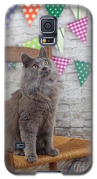 Sittin' Pretty Galaxy S5 Case