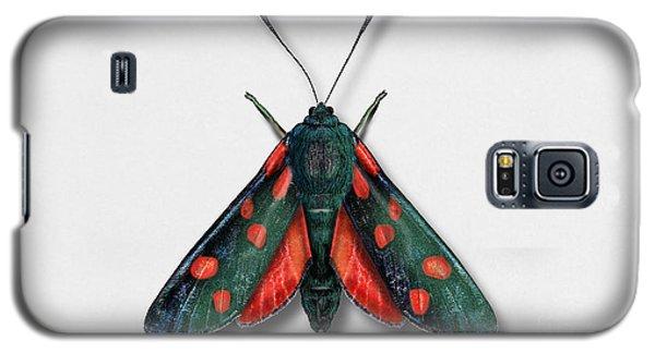 Six Spot Burnet Butterfly - Zygaena Filipendulae Naturalistic Painting - Nettersheim Eifel Galaxy S5 Case