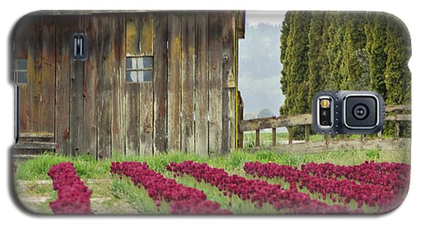Skagit Valley Galaxy S5 Case by Kjirsten Collier