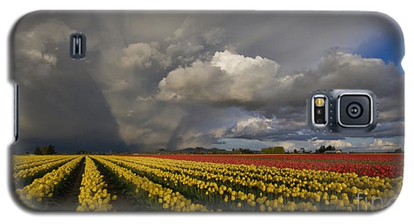 Skagit Valley Storm Galaxy S5 Case by Mike Reid