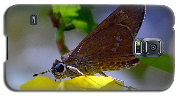 Galaxy S5 Case featuring the photograph Skipper Butterfly by Debra Martz