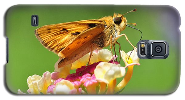 Galaxy S5 Case featuring the photograph Skipper On Lantana by Kathy Baccari