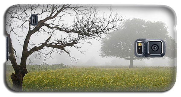 Skc 0058 Contrasty Trees Galaxy S5 Case