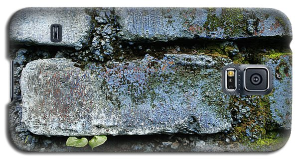 Galaxy S5 Case featuring the photograph Skc 0301 Tiny Twin Leaves by Sunil Kapadia