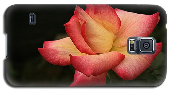 Galaxy S5 Case featuring the photograph Skc 0432 Blooming And Blossoming by Sunil Kapadia