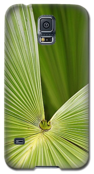 Galaxy S5 Case featuring the photograph Skc 0691 The Paths Of Palm Meeting At A Point by Sunil Kapadia