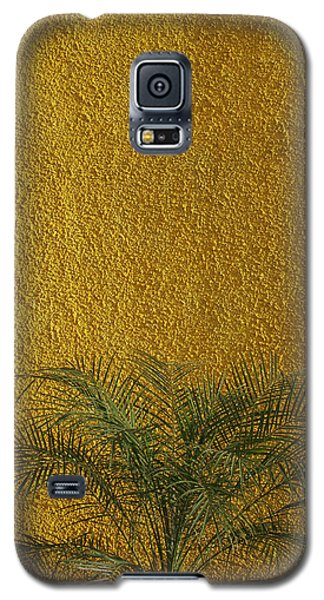 Galaxy S5 Case featuring the photograph Skc 1243 Colour And Texture by Sunil Kapadia
