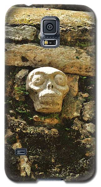 Skull Galaxy S5 Case by Puzzles Shum