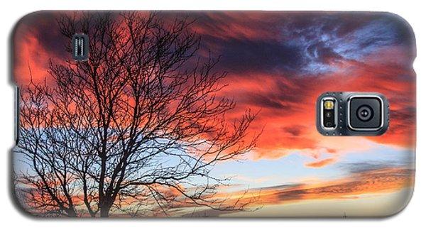 Sky Ablaze Galaxy S5 Case by Shirley Heier