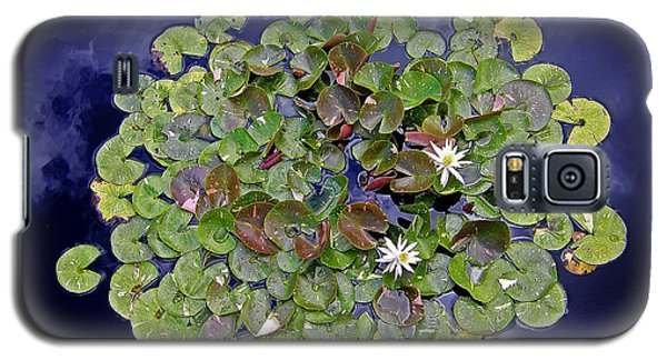 Galaxy S5 Case featuring the photograph Sky Lilies by Zafer Gurel