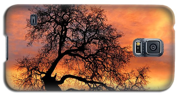 Galaxy S5 Case featuring the photograph Sky On Fire by Priya Ghose
