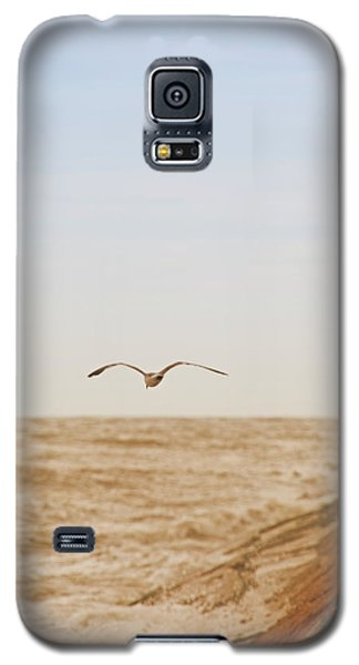 Sky Surfing Galaxy S5 Case by Max Mullins