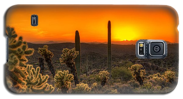 Skyfire Cholla Galaxy S5 Case
