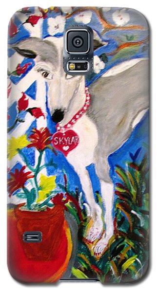 Skylar Miniature Greyhound Galaxy S5 Case