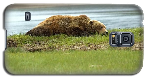 Sleeping Bear Galaxy S5 Case