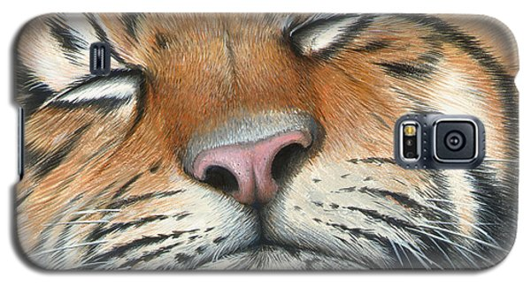 Sleeping Beauty Galaxy S5 Case