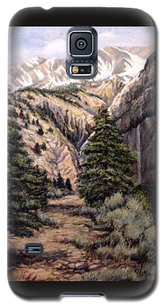 Galaxy S5 Case featuring the painting Sleeping Faces In The Rock by Donna Tucker