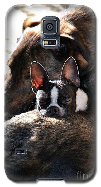 Sleeping In The Sun Galaxy S5 Case
