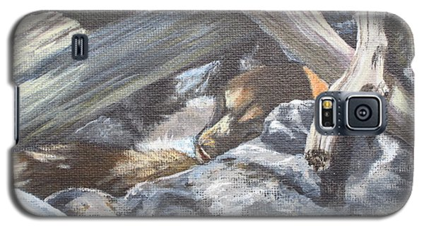 Galaxy S5 Case featuring the painting Sleeping Lion by Laurianna Taylor