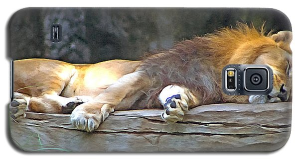 Sleeping Lion Galaxy S5 Case by Marion Johnson