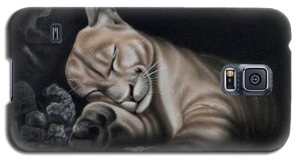 Sleeping Lion Galaxy S5 Case