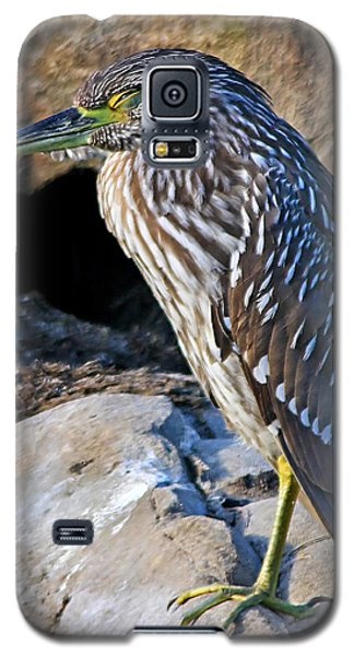Sleeping Night Heron Galaxy S5 Case