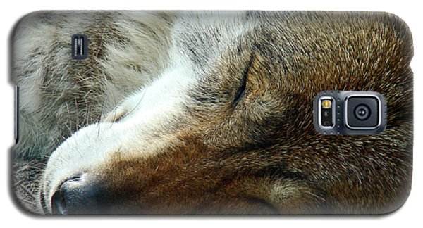 Sleeping Wolf Galaxy S5 Case