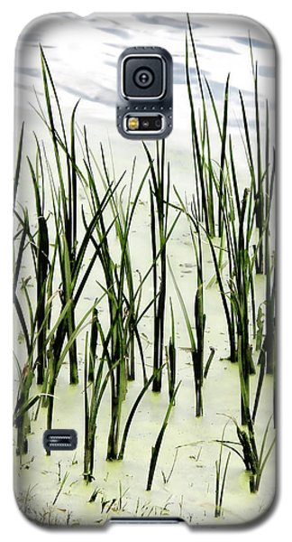 Slender Reeds Galaxy S5 Case