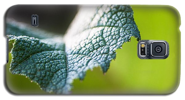 Galaxy S5 Case featuring the photograph Slice Of Leaf by John Wadleigh