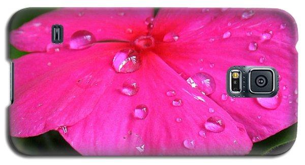 Sliders Galaxy S5 Case by Patti Whitten
