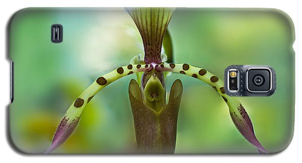 Slipper Orchid Of Selby Gardens Galaxy S5 Case