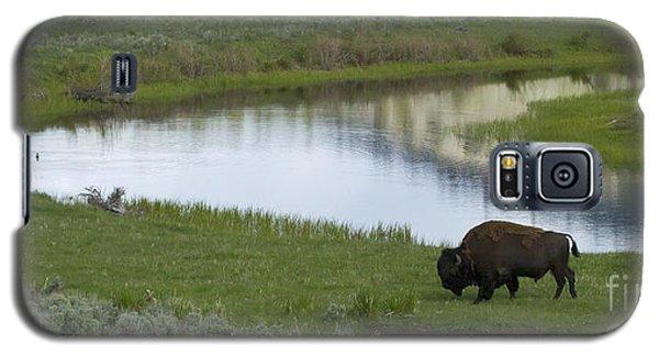 Slough Creek   #4111 Galaxy S5 Case