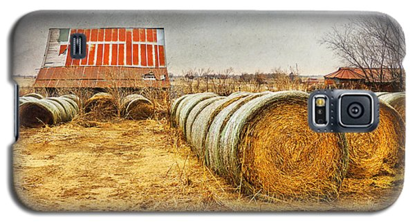 Slumbering In The Countryside Galaxy S5 Case by Betty LaRue