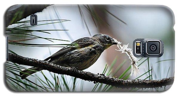 Small Bird Galaxy S5 Case