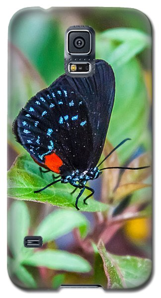 Small Black With Blue Spots Galaxy S5 Case by Karen Stephenson