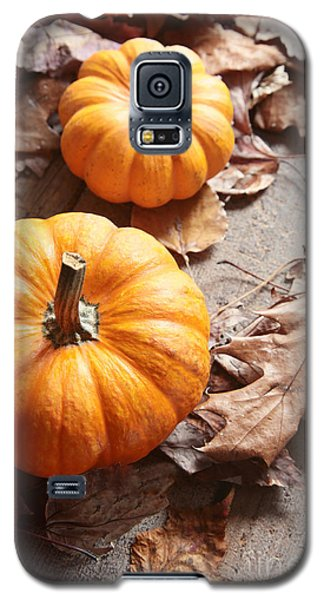 Small Pumpkins On Fall Leaves Galaxy S5 Case