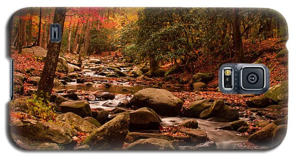 Galaxy S5 Case featuring the photograph Small Stream by Geraldine DeBoer